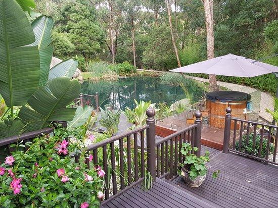 Montrose, Australië: 20180406_085214_large.jpg