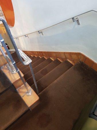 Hotel St. Augustine: Escalier