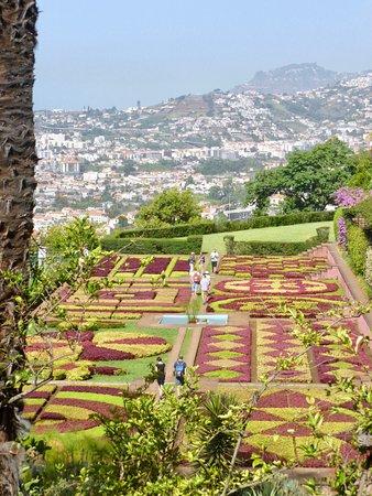 Madeira Botanical Garden: The Botanical Gardens In Funchal. We Took A Local  Bus To