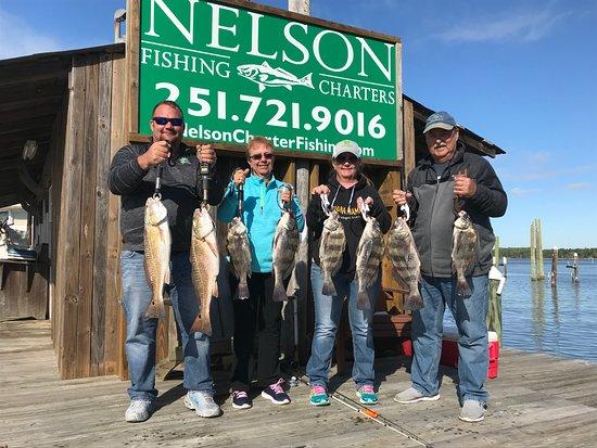 Nelson Inshore Fishing