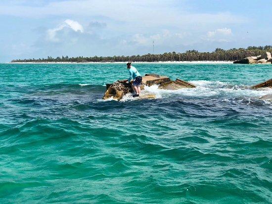 Palmetto, FL: Snorkeling trip