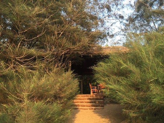 Raman Cottages: Restaurant from beach