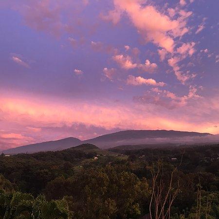 Maui Tradewinds: photo0.jpg