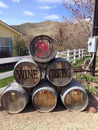 3 Horse Ranch Vineyards: Barrels of Fun!
