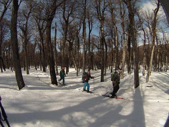 Esquel, Argentina: ski por el bosque