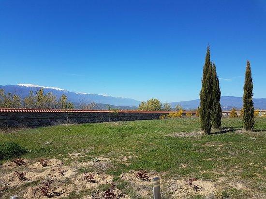 Orbelus Organic Winery