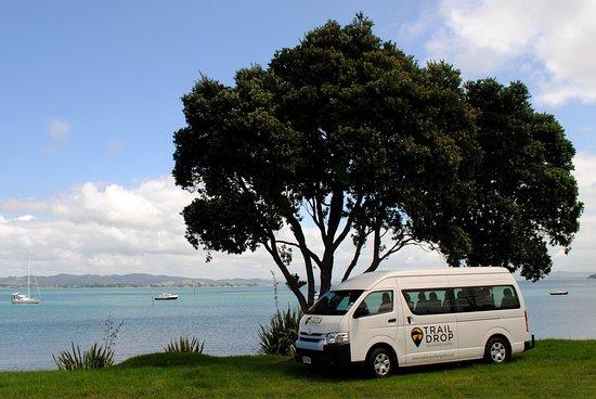 Whangarei, New Zealand: Our shuttle van