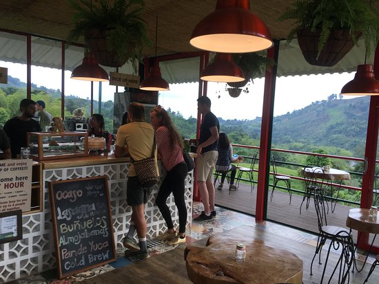 Traditional Coffee Tour With Tasting in Salento: best view of any coffee shop