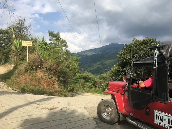 Traditional Coffee Tour With Tasting in Salento: Taking a willy to the farm