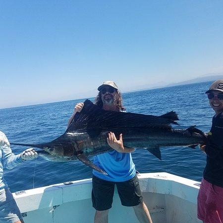 Puerto Vallarta Fishing - Capt Pete: Puerto Vallarta fishing report.. huge sailfish action this spring