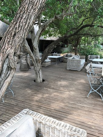 Ngala Private Game Reserve Resmi