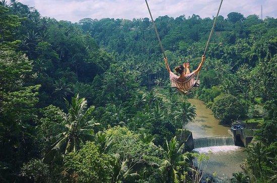 Halv dag Ubud Bali Swing med Hotel...