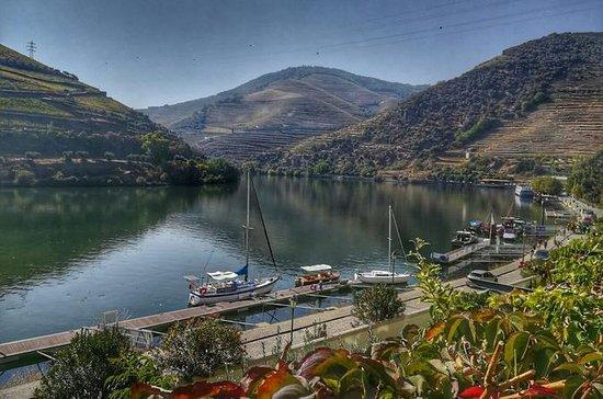 Tour pelo Vale do Douro com visita e...