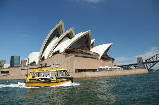 Sydney Harbour Snapshot Croisière de...