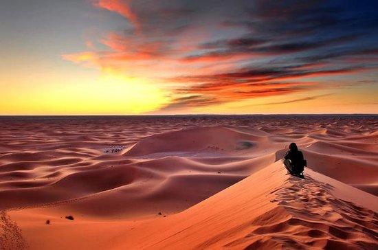 Safari dans le désert de 3jours de...