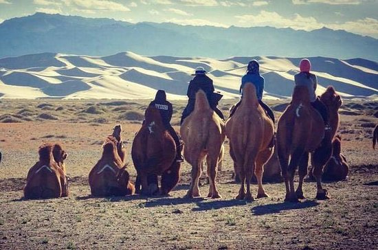 3 day Gobi Desert tour