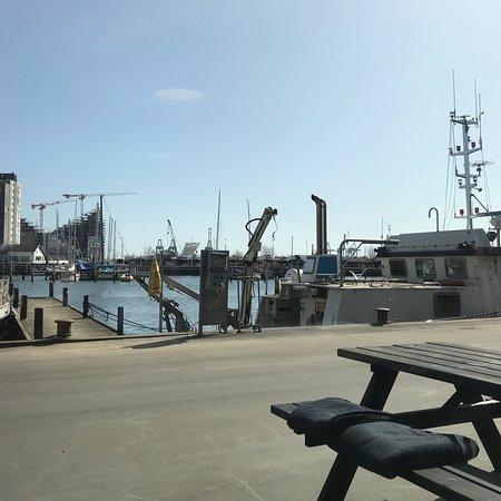 restaurant aarhus havn