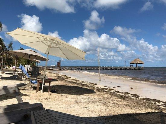 Maya Chan Beach Reviews