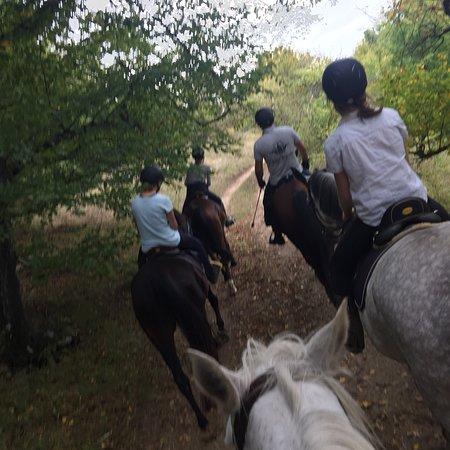 Sibiu, Roumanie : Villa Abbatis Equestrian Center