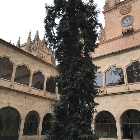 Universidad de Salamanca: photo2.jpg