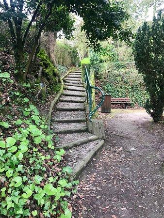 jardin des plantes park path - Jardin Des Plantes Caen