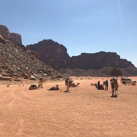 Wadi Rum Nomads - Day Tours Photo