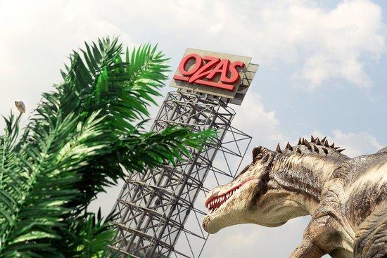 DinozaurU parkas DINO