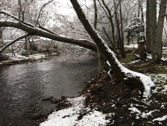 Newport, TN: our creeks