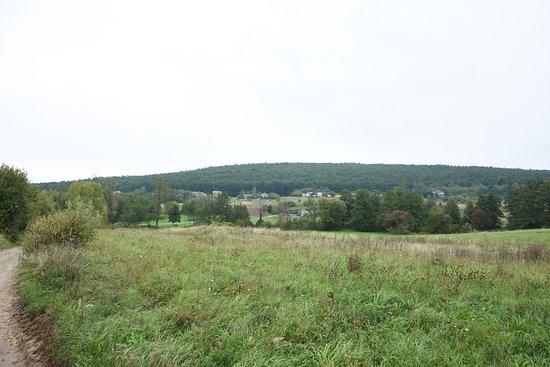 Rezerwat Chelmowa Gora