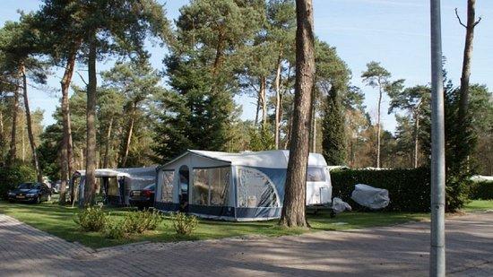 da30cf8986d VAKANTIEPARK DE REEBOK - Prices & Campground Reviews (Oisterwijk, The  Netherlands) - TripAdvisor