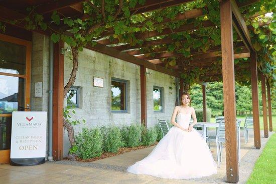Villa maria winery wedding