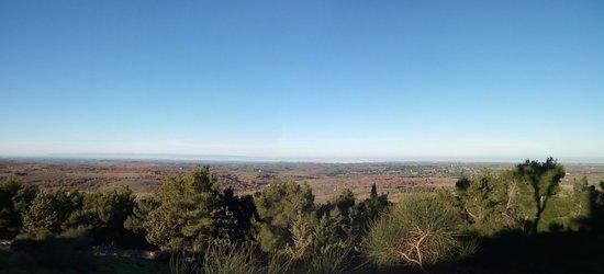 Province of Barletta-Andria-Trani, อิตาลี: dal castello guardando verso Andria e la costa