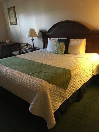Scipio, UT: Very comfy bed!