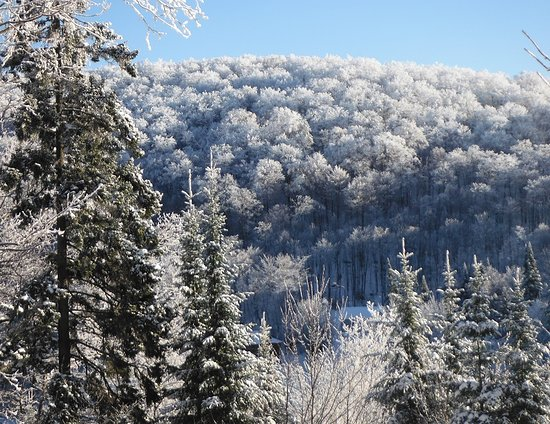 Saint-Adolphe-d'Howard, Canada: A spectacular winter scenery as seen from our terrace and bedroom window.