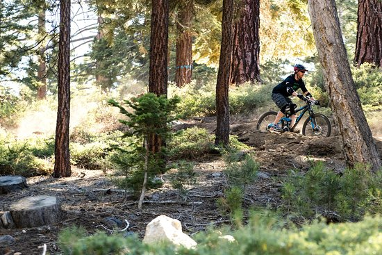 Big Bear Lake, CA: Skyline Trail iThe Skyline Trail is a 15-mile single-track ride that runs alongside the 2N10.