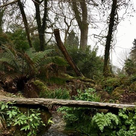 The Lost Gardens of Heligan: photo3.jpg
