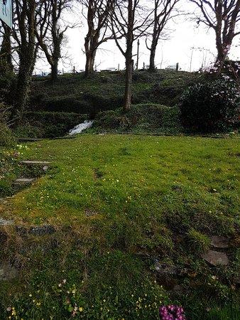 Castlemorris, UK: 20180412_111917_large.jpg