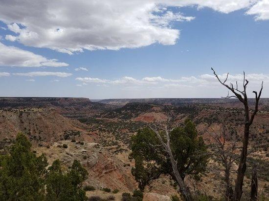 Canyon, TX: 20180408_143035_large.jpg