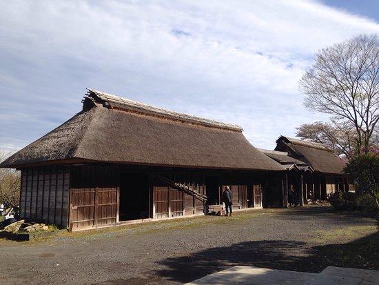 Ideke Koraimon & Nagaya