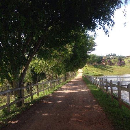 État du Minas Gerais: photo7.jpg