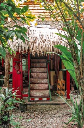 Walaba Hostel & Beach Houses Photo