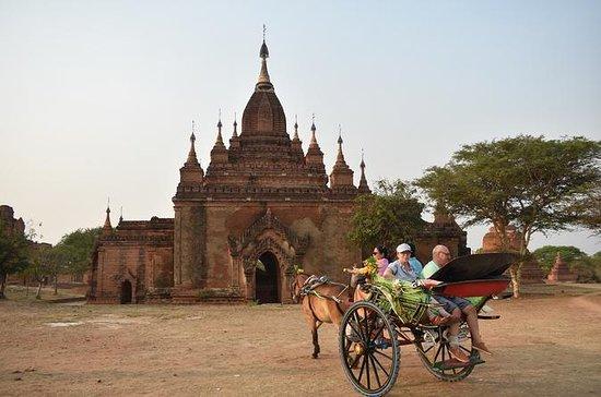 Amazing Bagan, full day tour by car...