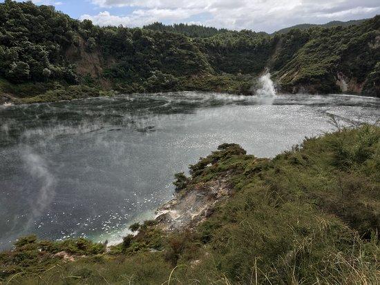 וואימאנגו, ניו זילנד: photo5.jpg