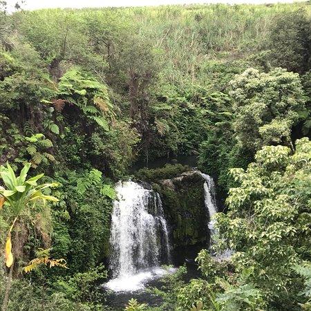 Honomu, هاواي: photo1.jpg