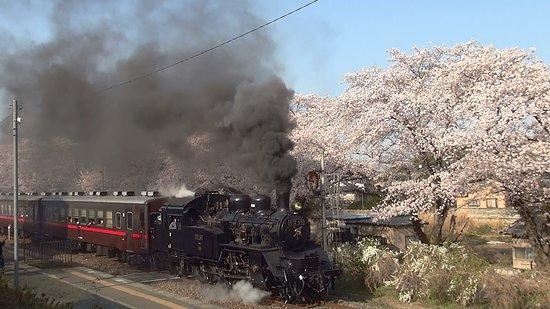 Tochigi Prefecture Photo
