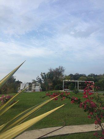 Hotel Casitas Sollevante: Jardin