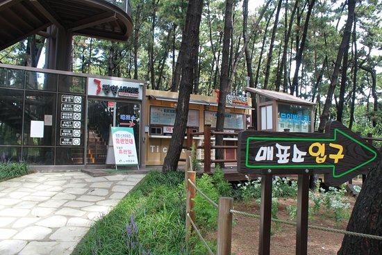 Seocheon-gun Restaurants
