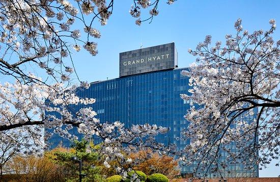 그랜드 하얏트 서울 사진