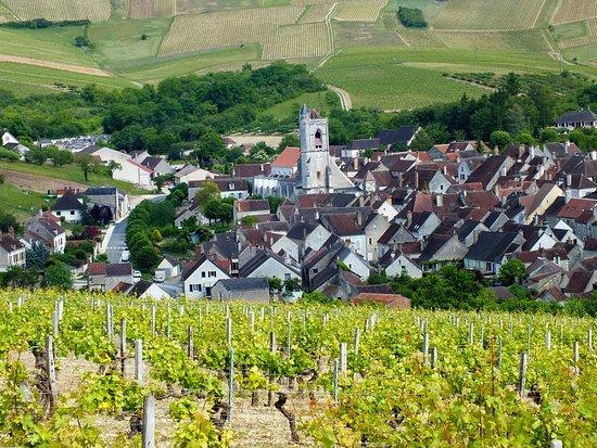 Burgundy, France: Irancy et ses vignes