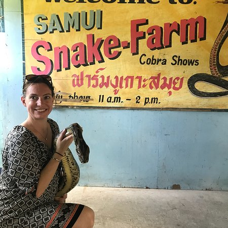 Samui Snake Farm: photo0.jpg